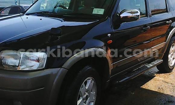 Buy Ford Escape Black Car in Arua in Uganda