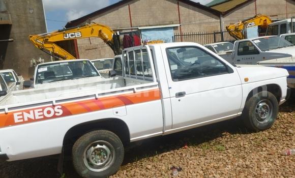 Buy Nissan Pickup White Car in Arua in Uganda