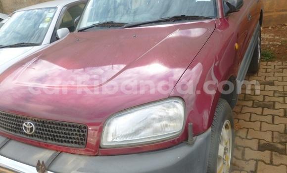 Buy Toyota RAV4 Other Car in Kampala in Uganda