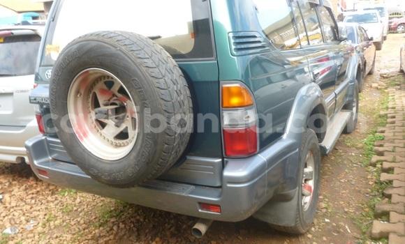 Buy Toyota Land Cruiser Prado  Car in Arua in Uganda