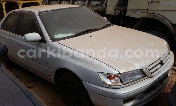 Buy Toyota Premio White Car in Arua in Uganda