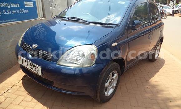 Buy Toyota Vitz Blue Car in Arua in Uganda