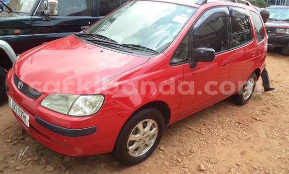 Buy Toyota Spacio Red Car in Arua in Uganda