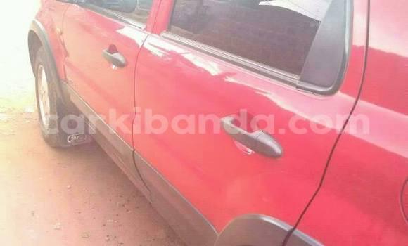 Buy Ford Focus Red Car in Kampala in Uganda