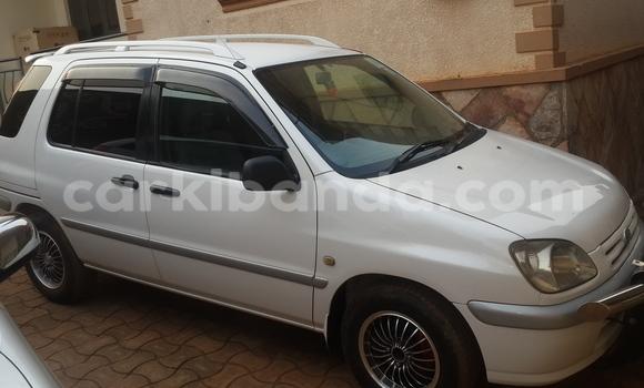 Buy Toyota Raum White Car in Arua in Uganda
