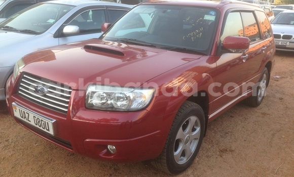 Buy Subaru Forester Red Car in Arua in Uganda