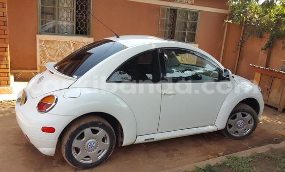 Buy Volkswagen Beetle White Car in Arua in Uganda
