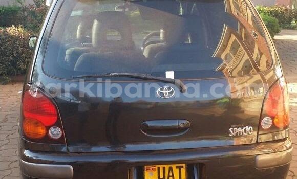 Buy Toyota Spacio Black Car in Arua in Uganda