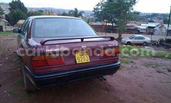 Buy Nissan Primera Red Car in Kampala in Uganda