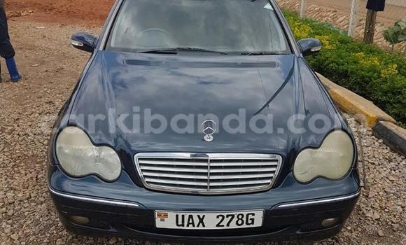 Buy Mercedes Benz C-Class Blue Car in Kampala in Uganda