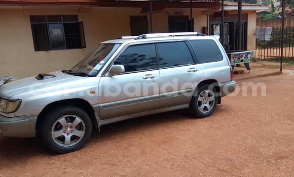Buy Subaru Forester Silver Car in Arua in Uganda