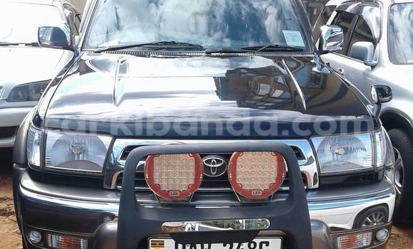 Buy Toyota Surf Black Car in Arua in Uganda