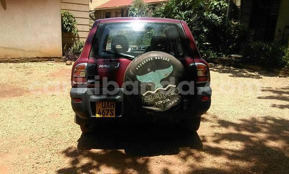 Buy Toyota RAV4 Red Car in Arua in Uganda