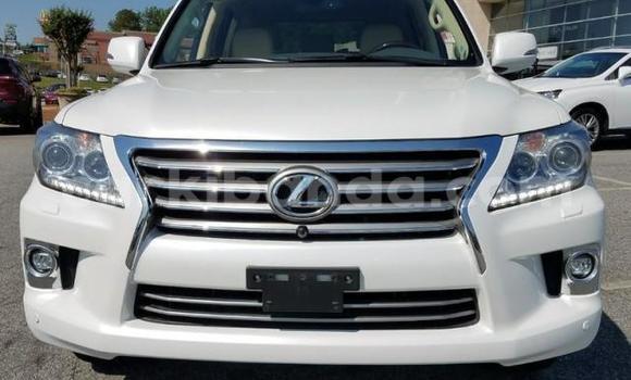 Buy Lexus LX White Car in Mukono in Uganda