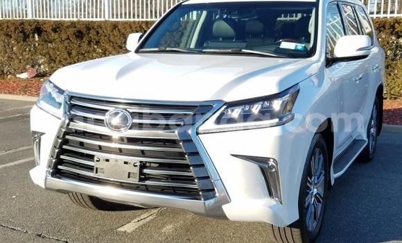 Buy Lexus LX White Car in Entebbe in Uganda