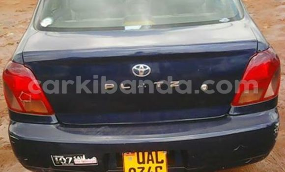 Buy Toyota Platz Other Car in Kampala in Uganda