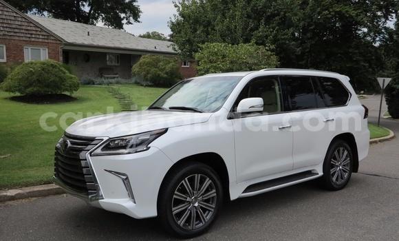 Buy Lexus LX White Car in Busia in Uganda