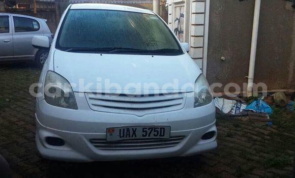 Buy Toyota Spacio White Car in Busia in Uganda