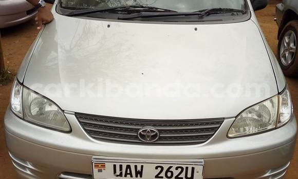 Buy Toyota Spacio Silver Car in Busia in Uganda