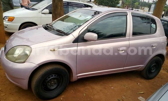 Buy Toyota Vitz Other Car in Busia in Uganda