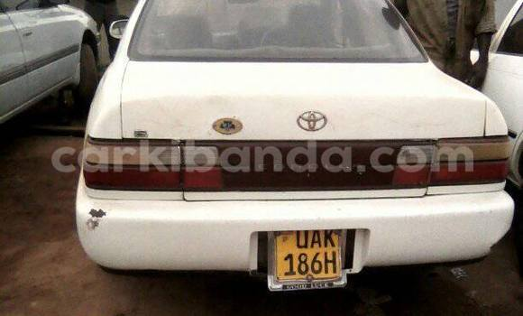 Buy Toyota Corolla White Car in Busia in Uganda
