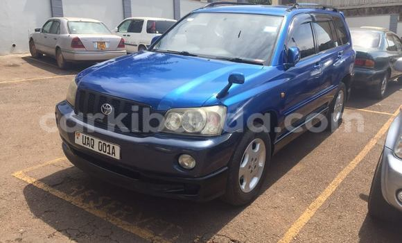Buy Toyota Kluger Blue Car in Busia in Uganda