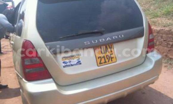 Buy Subaru Forester Other Car in Busia in Uganda