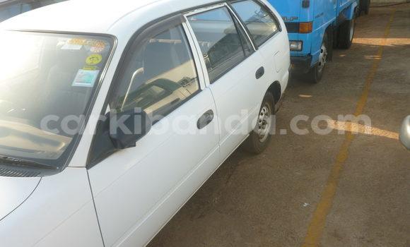 Buy Toyota 4Runner White Car in Arua in Uganda